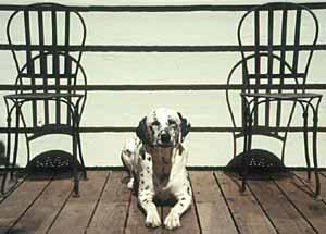022-12-pretz_chairs-s.jpg